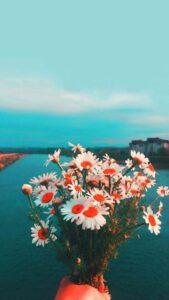 flores para fondo